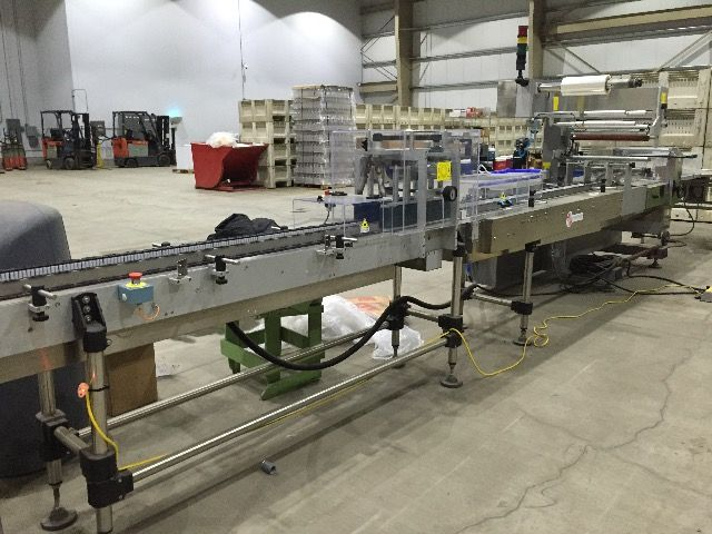 Delfin Lyra 600 Horizontal Flow-Pack Machine
