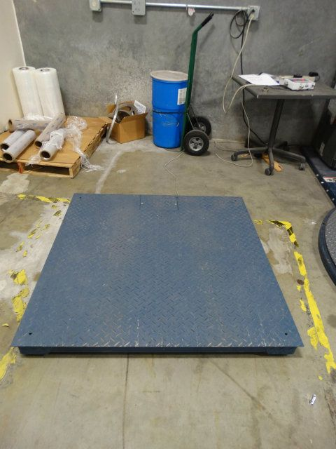 Inscale LP 5000 Pound Floor Scale